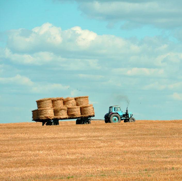 The Future of Farming!