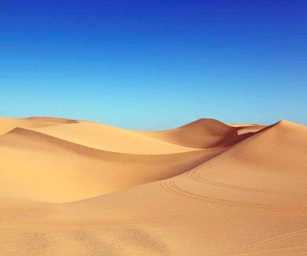 A Journey Through Egypt